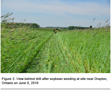 Figure 3. View behind drill after soybean seeding at site near Drayton, Ontario on June 8, 2019