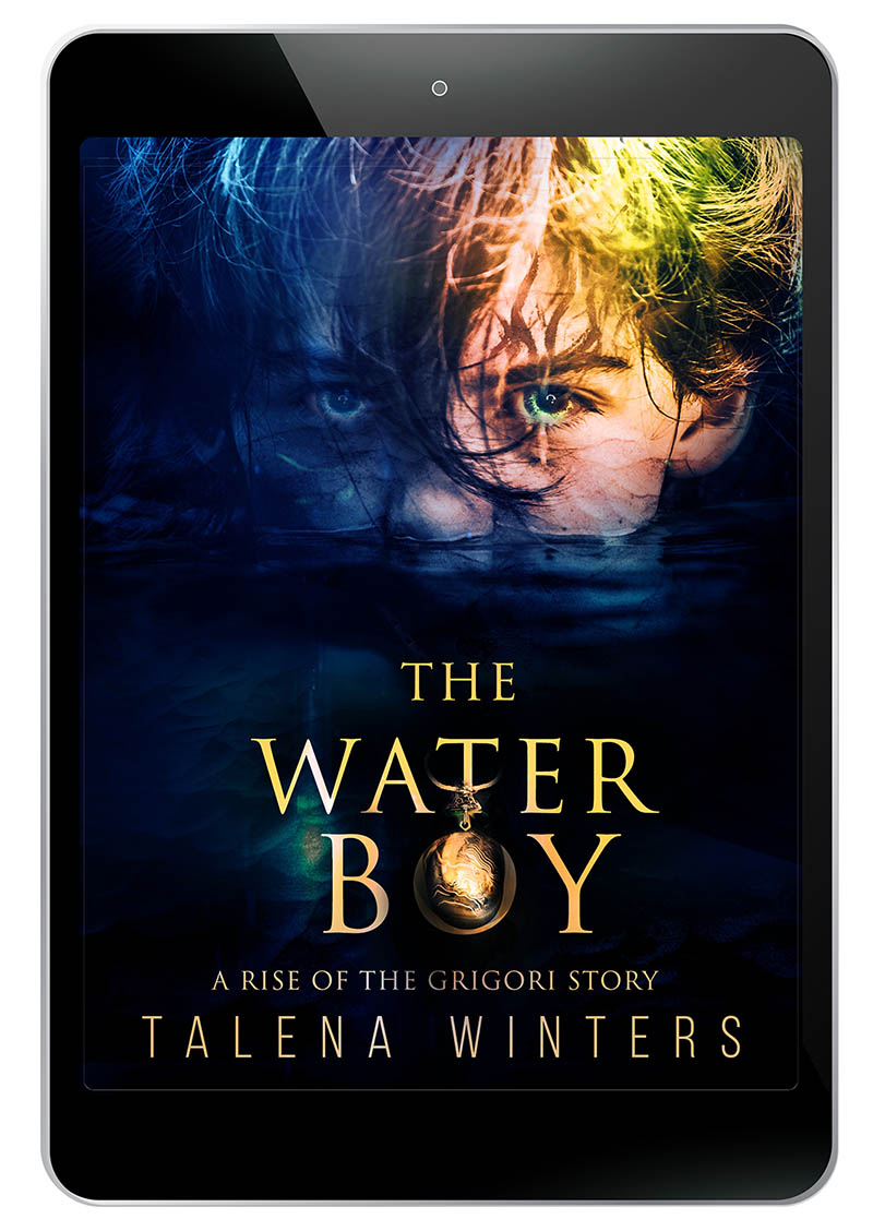 The Waterboy ebook