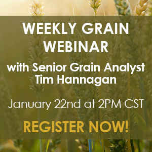 Register Now - Tim Hannagan's Weekly Grain Webinar on Friday, January 22nd at 3PM CST