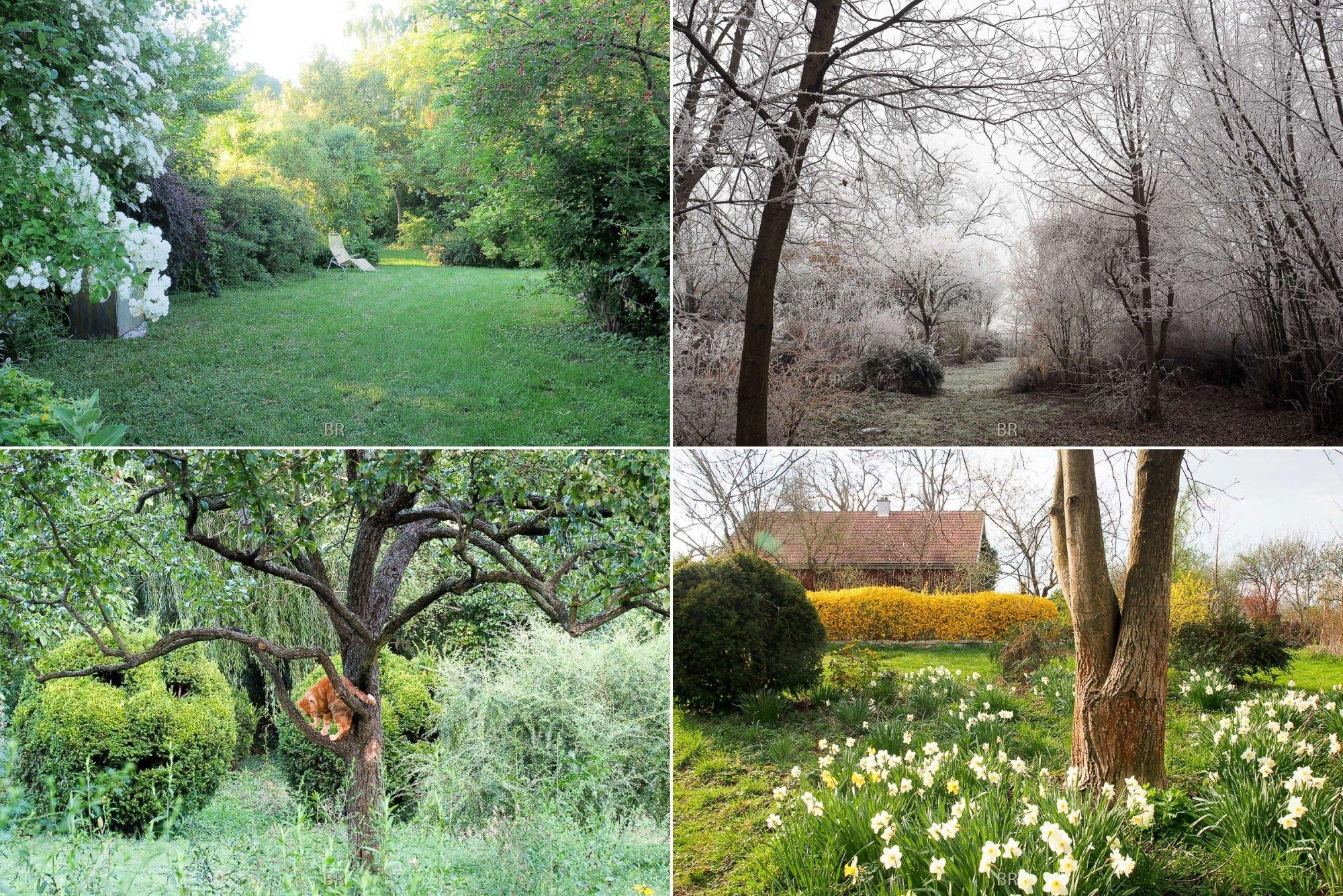 4 Ansichten eines alten Gartens