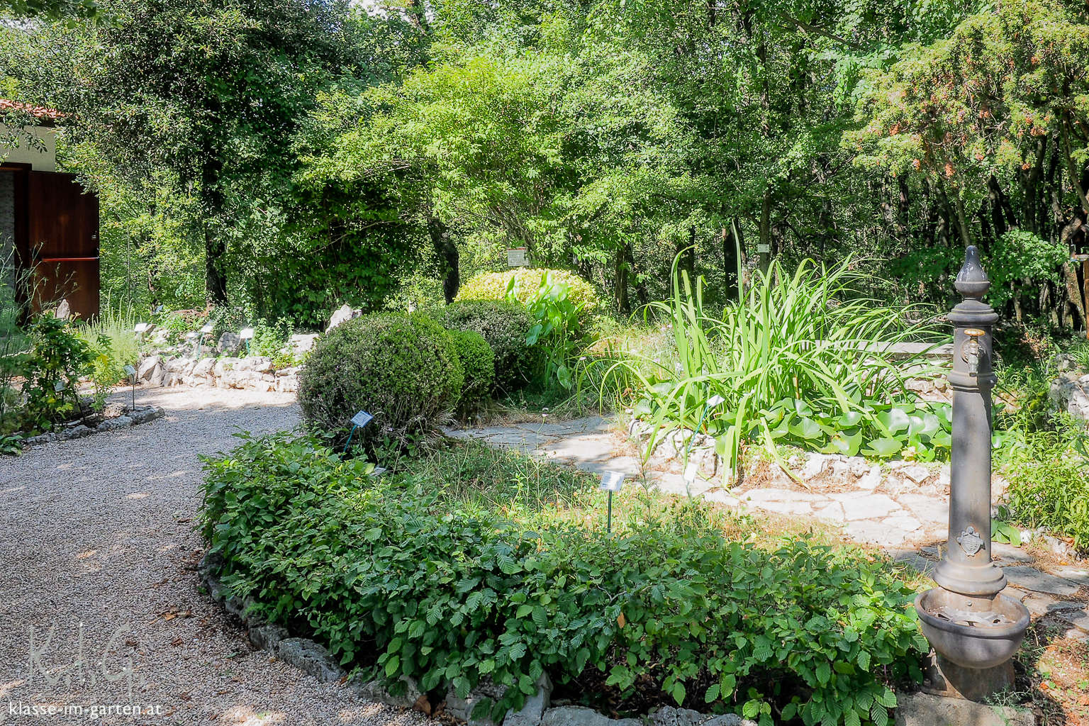 Giardino Botanico Carsiana- viel Garten im Eingangsbereich