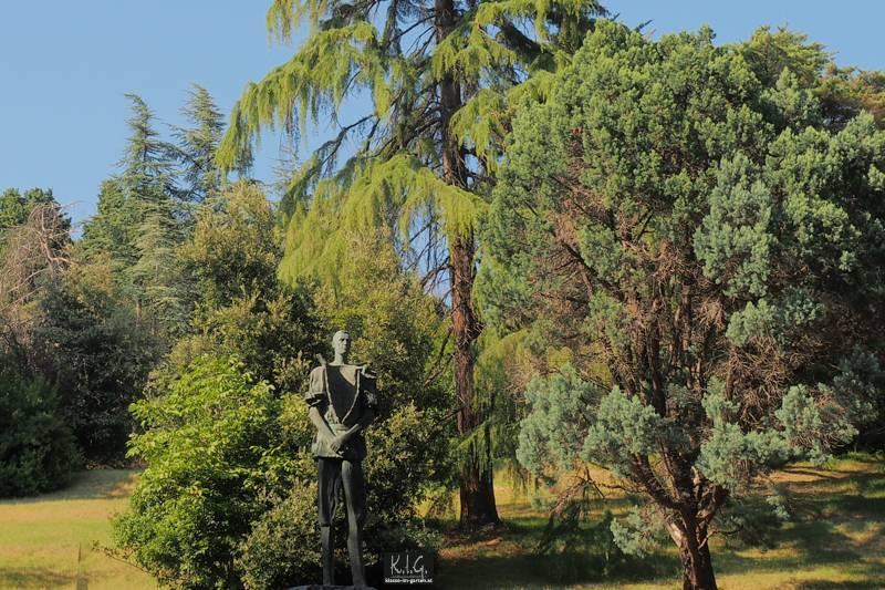 Fantastische gepflegte, oft rare, Baumveteranen in Parco Castello Miramare