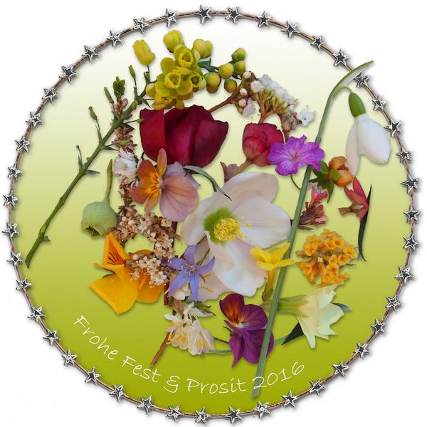 Entspannte Feiertage und ein spannendes Neues Gartenjahr