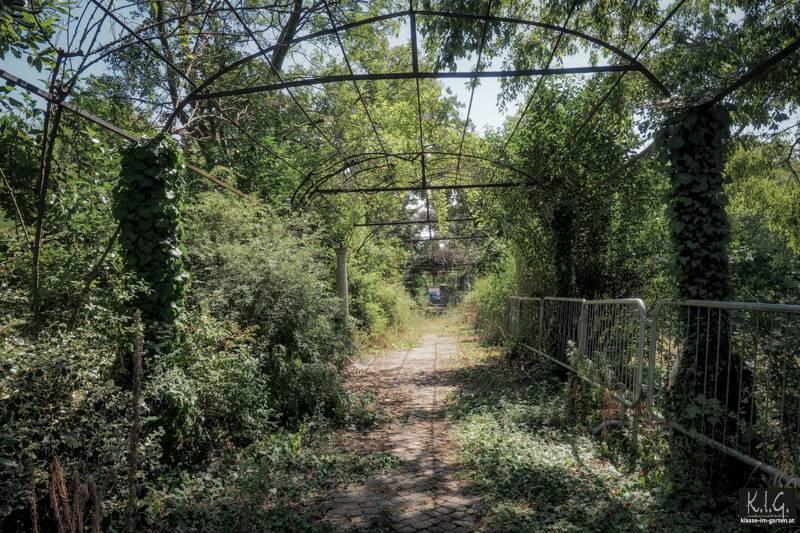 Pergola im Park der Villa Engelmann Triest