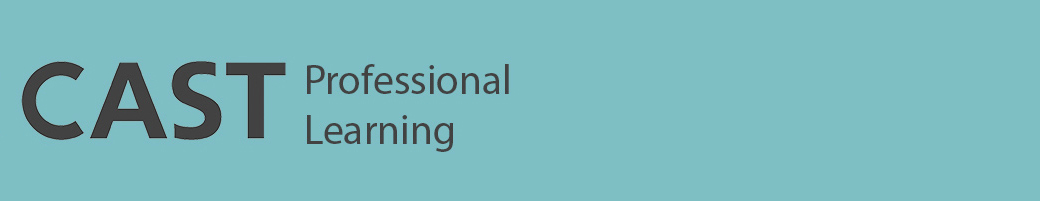 UDL Professional Learning banner