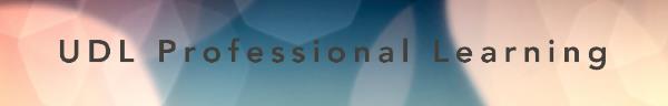 UDL Professional Learning logo banner
