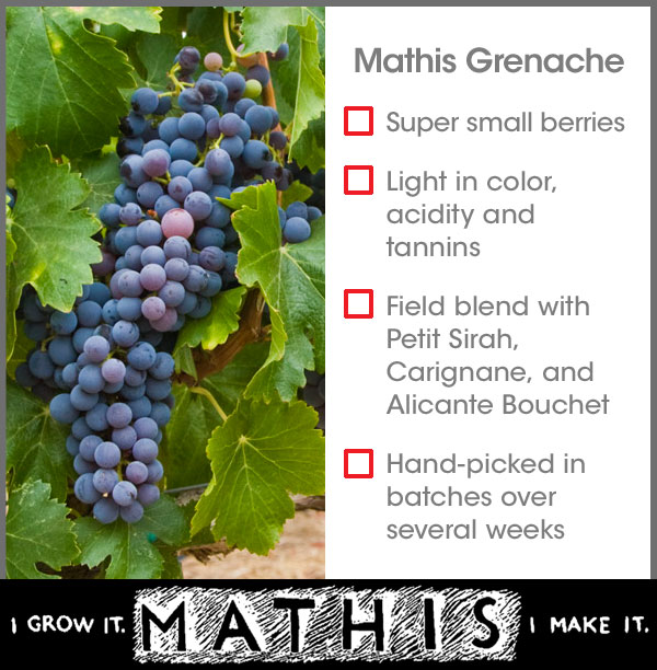 Mathis Grenache questions