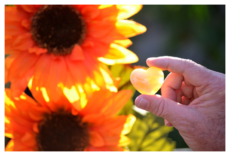 heart and sunflowers