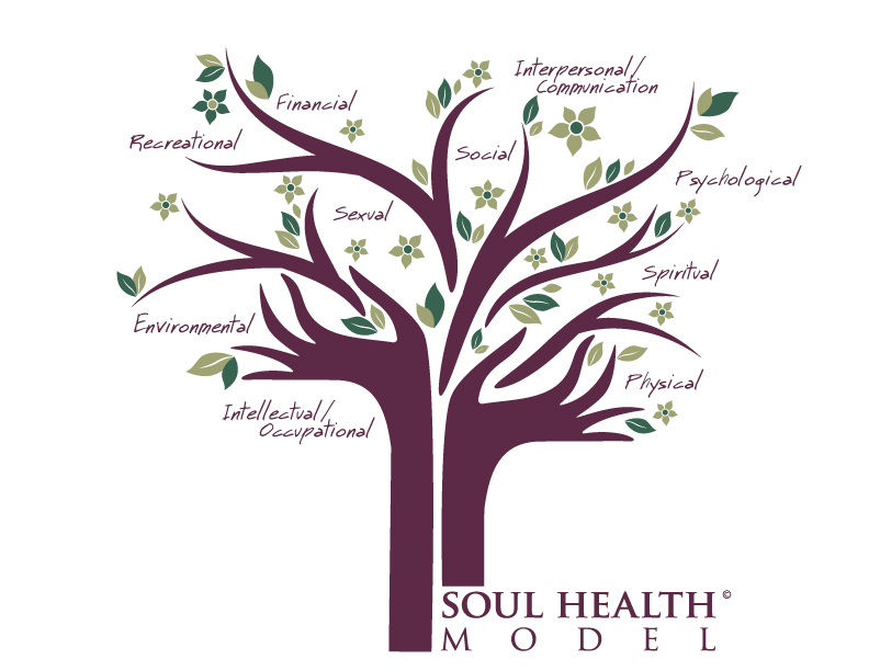soul health model