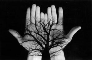 tree hands