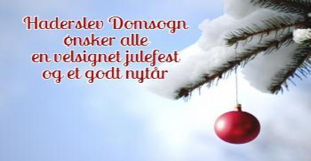 Haderslev Domsogn ønsker alle en velsignet julefest og et godt nytår