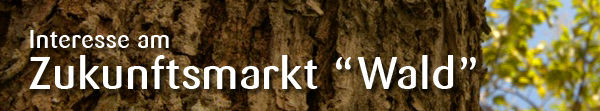 Investieren Sie in den Zukunftsmarkt Holz