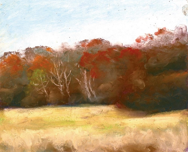 soft november afternoon by bernadette e kazmarski