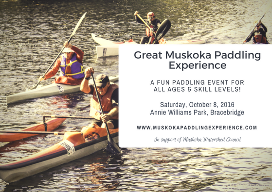 2016 Great Muskoka Paddling Experience