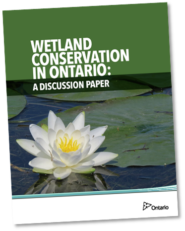 Wetland Conservation in Ontario: A Discussion Paper