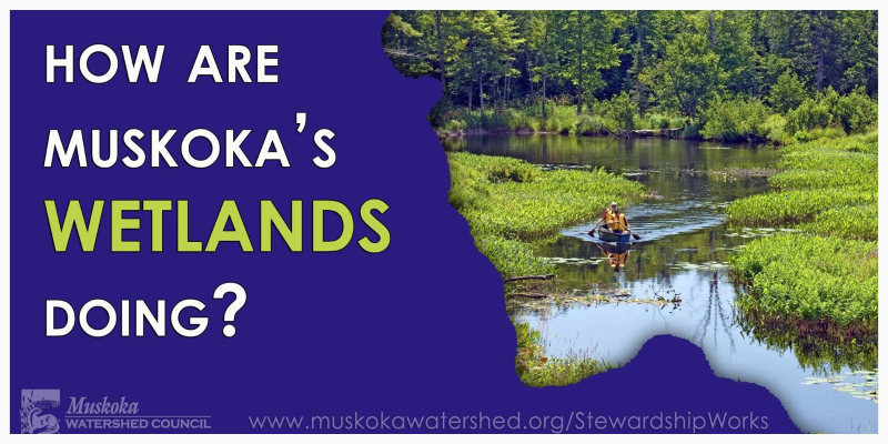 2014 Muskoka Watershed Report Card