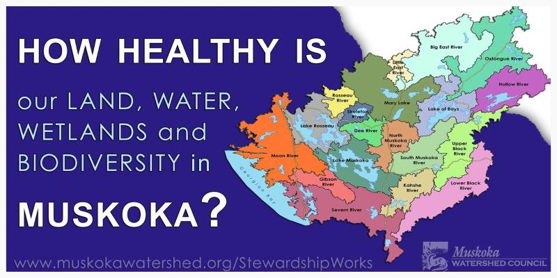 2014 Muskoka Watershed Report Card