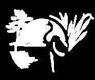 Muskoka Conservancy