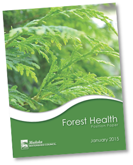 MWC Forest Health Paper