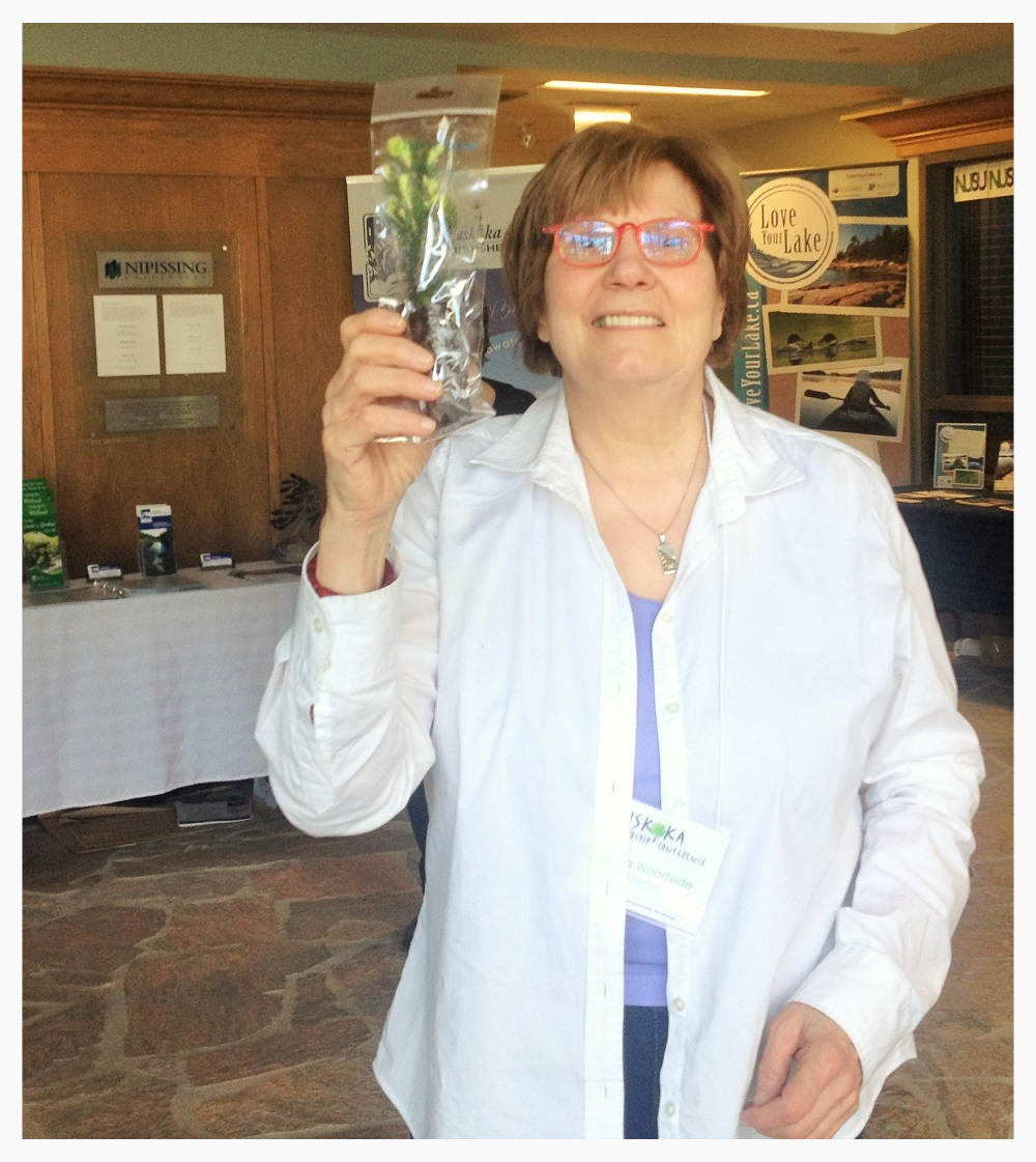 Gloria Woodside holds up a spruce seedling handed out by CedarCoast Timber Homes