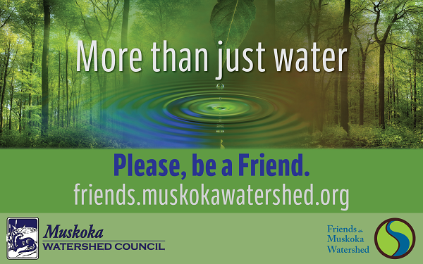 Join Friends of the Muskoka Watershed