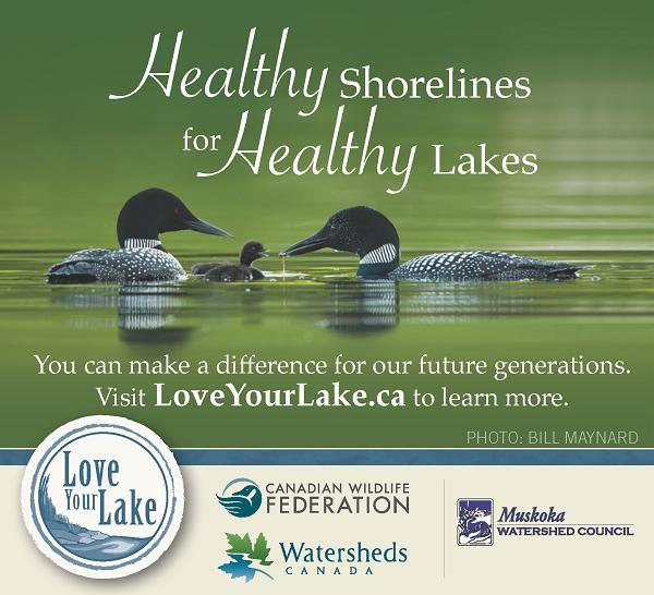 Love Your Lake in Muskoka