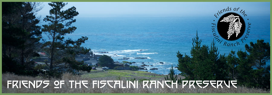 Friends of the Fiscalini Ranch Preserve