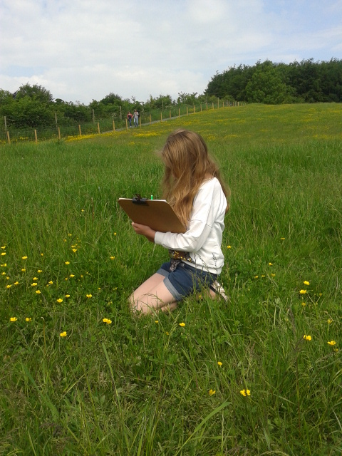 Person recording in a meadow. Photo by Jacky Chaplow. © NERC – Centre for Ecology & Hydrology. All rights reserved