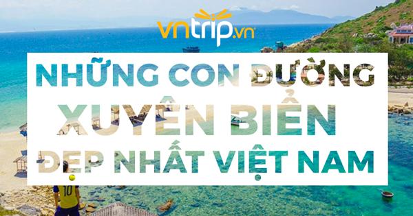 Trải nghiệm 4 con đường xuyên biển đẹp mê hồn ở Việt Nam 🌊🌊🌊