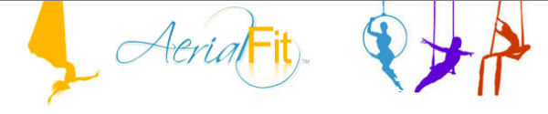 Aerial Fit logo
