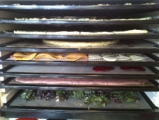 Get to Know your Dehydrator workshop with Aradhana near Bath, 7 March 2014
