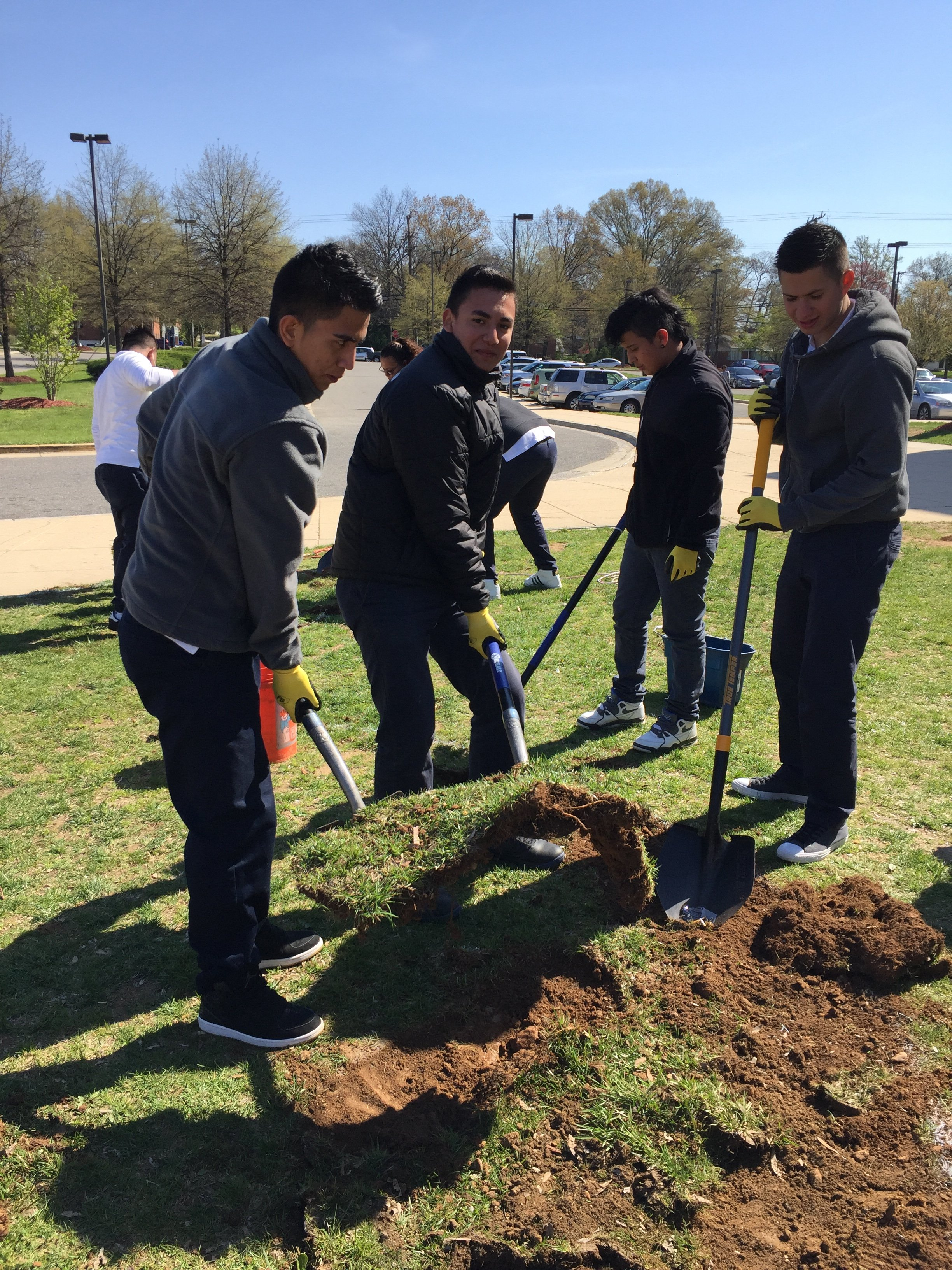 Students removing sod to plant a conservation garden.