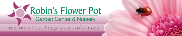 Robin's Flower Pot wants to keep you informed