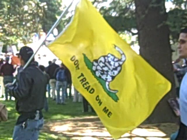 Photo by Alice Selby and Gadsden Flag image both from   http://www.gadsden.info/Tea-Party/Sacramento.html