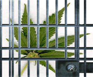 Marijuana Possession Punishable with Jail Time?