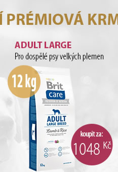 BRIT CARE DOG ADULT LARGE BREED LAMB RICE 12 KG
