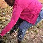 Deirdre Courtney pulling knapweed.