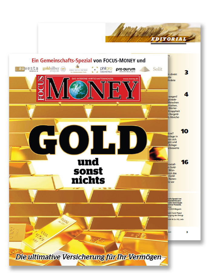 Download Focus Money Basiswissen Gold