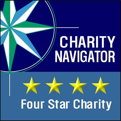 Four Star Charity Badge