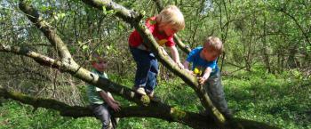 Inspiratie- en uitwisseldag jeugd & jongeren in de natuur