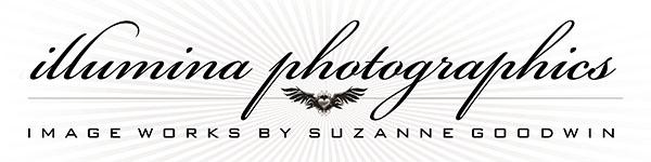 Illuminaphotographics.com logo image