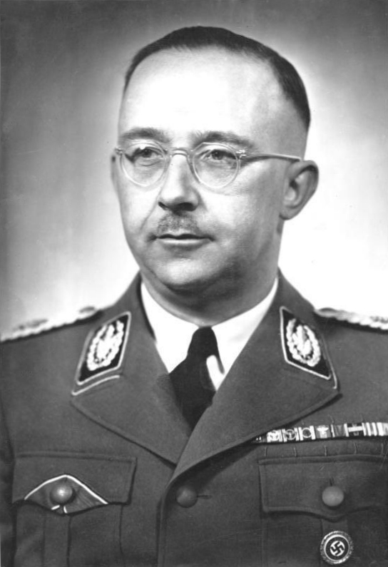 Conviction of man who posted image of swastika-adorned Himmler upheld by ECtHR