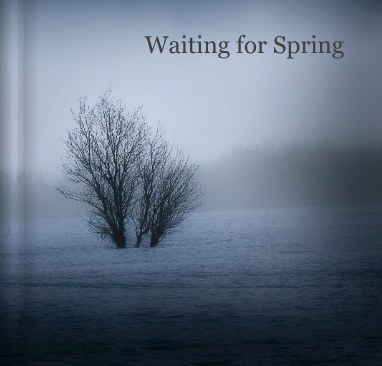 Waiting for Spring book cover