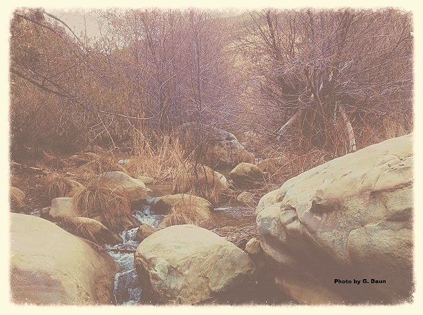 """Click """"display images"""" to see this Photo by Garrett Daun, in the wilderness north of Ojai, CA."""