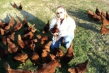 Carole Morison and hens