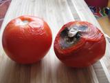 Sylvies tomatoes