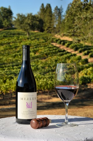 2013 Zinfandel Buy Now