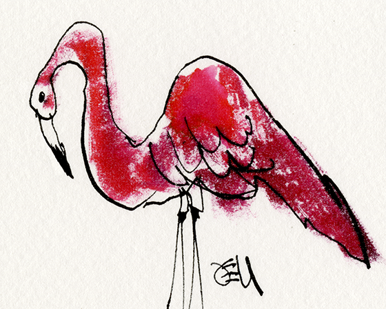 Pink Flamingo Illustration