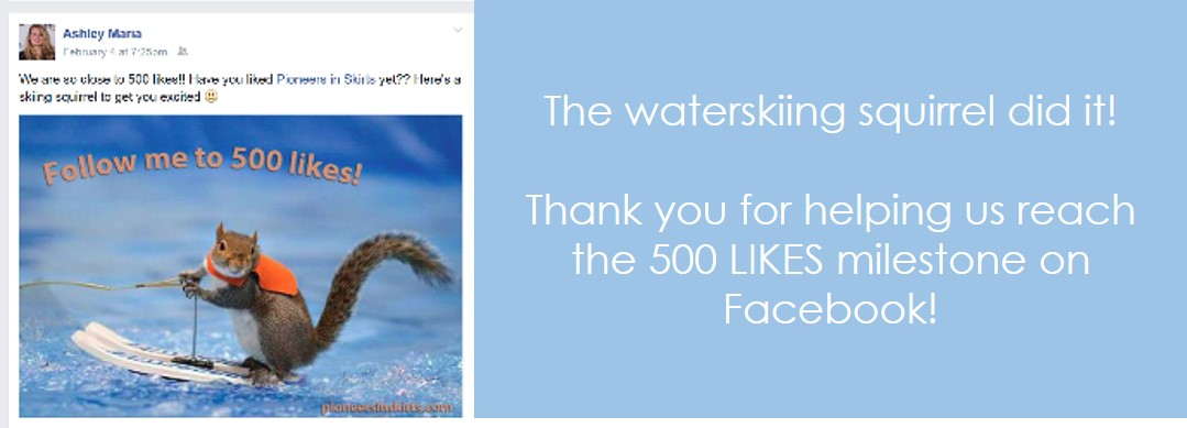 We've surpassed 500 Facebook likes!!!
