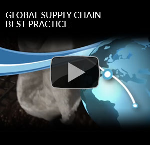 Global Supply Chain Best Practice